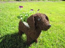 20121001biola&dog.JPG