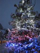 20121229 snow kettei.JPG