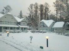20150116amerry snow.JPG