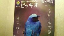20150318piccio.JPG